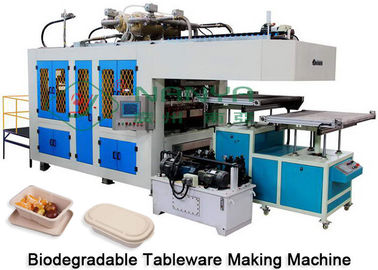 Good Quality Pulp Molding Equipment & Paper Plate Tableware Making Machine Dry And Cut In Mold CE Certificate on sale
