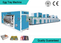 China Full Automatic Moulding Pulp Egg Tray Machine with 4000 Pcs/H factory