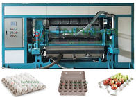 Satble Automatic Paper Pulp Molded Egg Tray Machine 5000pcs/H