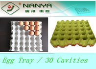 China Biodegradable Pulp Moulded Products Disposable Egg Tray with 30 Cavities factory