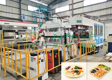 Eco-Friendly Auto Robot Arm Bagasse Fiber Tableware Making Machinery