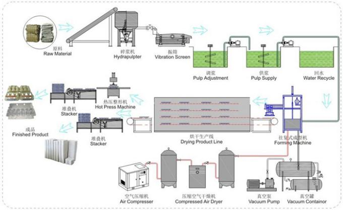 Recycled Paper Egg Carton Machine Full Automation 1000 Pcs / H