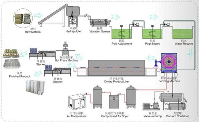 Fully - Auto Egg Tray Production Line Single Layer Drying Line 6000Pcs/H