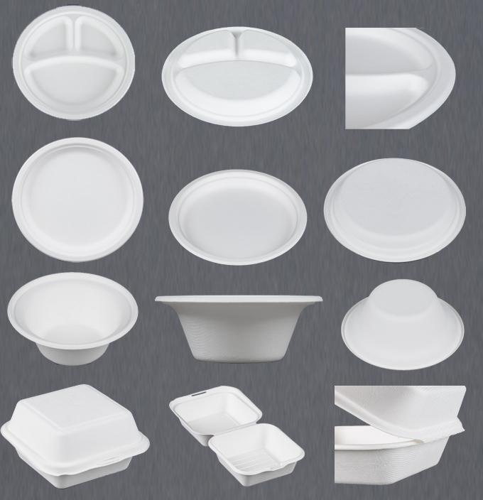 Biodegradable Sugarcane Moulding Pulp Equipment Paper Plate