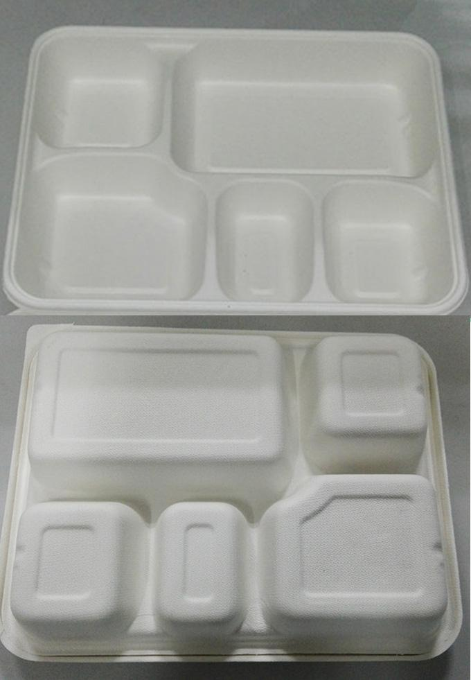 Compostable Bagasse Pulp  Food Tray Tableware Making Machine Drying in Mould